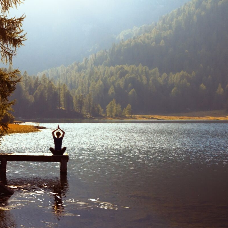 Forest Bathing – a Mindful Practice